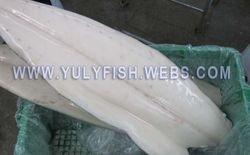 Oilfish fillets