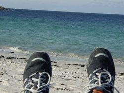 Urlaub mit Hund Bretagne 13