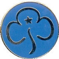 Current Guide Promise Badge