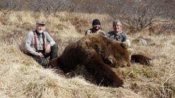 Paul Woods April bear.
