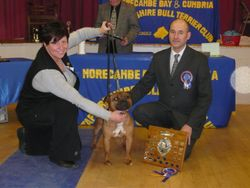 MorecombeBay & Cumbria Limit Show 2009 Best in Show
