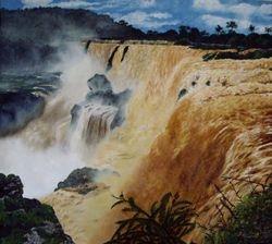 El norte del sur (Catartas del Iguazu, Argentina)