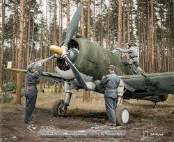 Finnish Fokker D.XXI :
