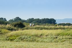 Birdwatchers walking along the North Wall Pagham Harbour
