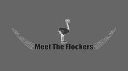 """Meet the Flockers"""