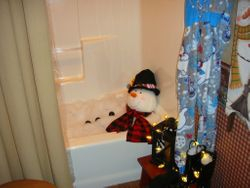 Saunder's Home Snowman in a Snow-bath