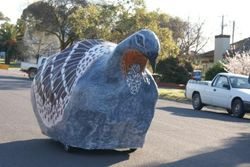 Mavis the Magical Malleefowl getting ready for the festivities