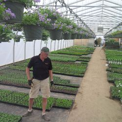 Dad in Greenhouse 3