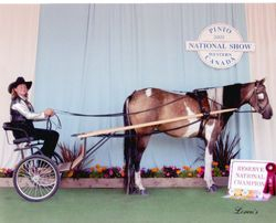 Crystal and Spice Reserve National Champion