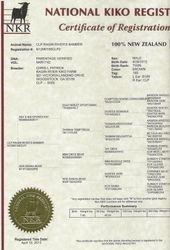 NKR Certificate