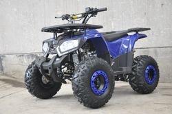 Blue Raider
