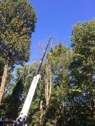 Crane Removal Job in Delaware County