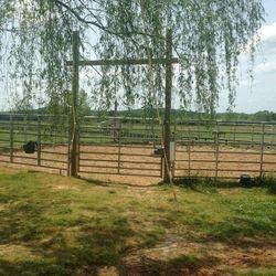 50' round pen gate