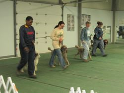 Training for PCA Team.  3/24/10.