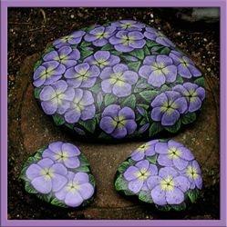 Primrose - Purple