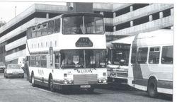 GCS 50V In Two Tone Grey, Black & White