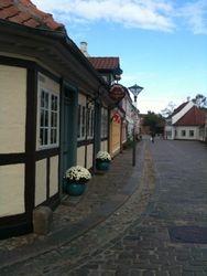 Hans Christian Andersen's neighborhood