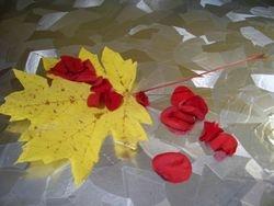 Leaf & Petals