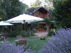 B&B set within a lavender farm