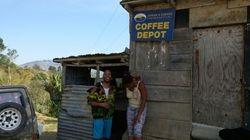 Local Mountain Coffee Shop