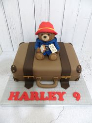 Harley's 9th Birthday Cake
