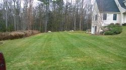 Yard Stripes