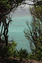 View from Baradel island