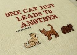 'One cat..'