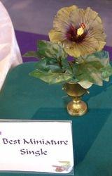 BEST MINIATURE SINGLE - TURKEY TRACKS - Deb & Nick Spencer, Houston, TX.