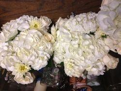 Loving Hydrangeas