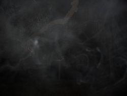 Ecto mist outside