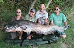 Robs 198lb wels catfish