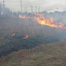 Wildland Fire Training, 10-21-17