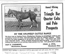 1916 Jack Casement Advertisement