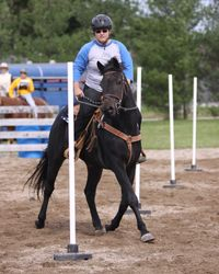 Bue and Rebecca Trotting Poles!