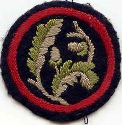 Oak Ranger Patrol Badge
