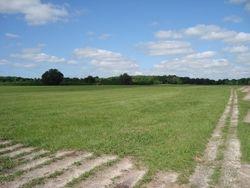 Bahia field