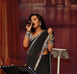 India Festival, Huntsville, Al