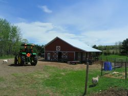 A beautiful day on the farm.
