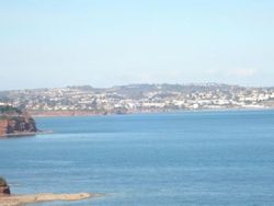 Stunning Views of Torbay Coast