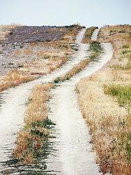 Plain Road