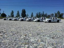 NORTH CHARLESTON POLICE DEPARTMENT, SC