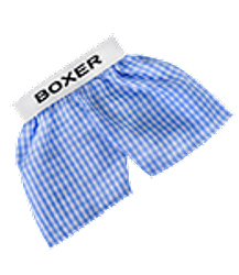 Blue and white checker shorts