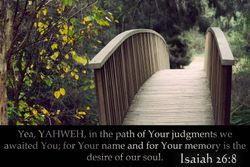 Isaiah 26:8