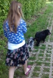 Walking with Maddy at Moreton Hall