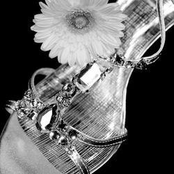 Cinderella Moment