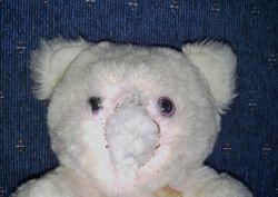 Teddybear repair