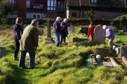 WI members survey the churchyard