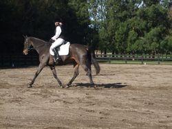 Pauline Colclough riding her Level 1 test