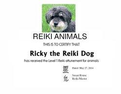 Ricky the Reiki Dog